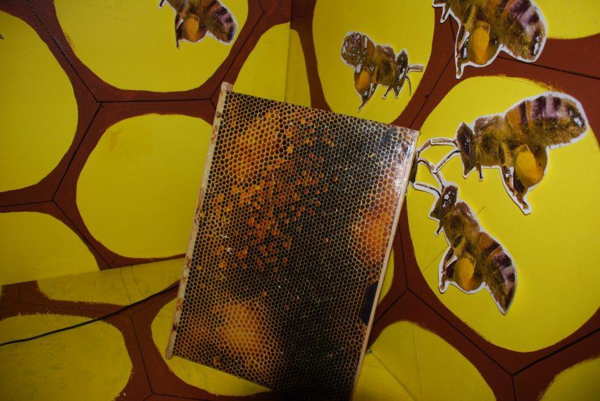 Příští farmářský trh se Slavnostmi medu
