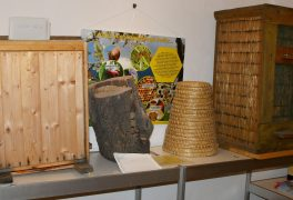 Včelařská výstava v muzeu