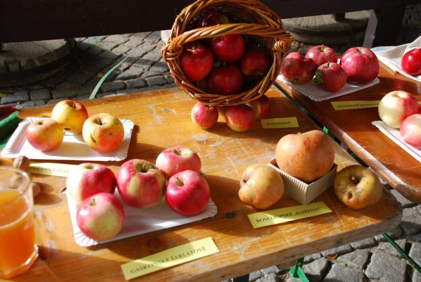 Výstava ovoce přivolala podzim